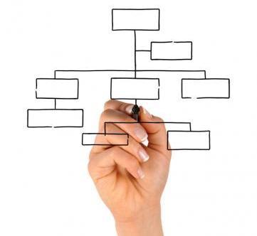 elaborar-organigrama-empresa.jpg