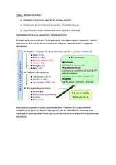 TEMA%201.pdf