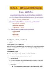 TEMA%205.pdf