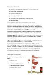 Tema%202.pdf